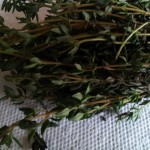 Jamaican Spice Review: A bundle of thyme; close up