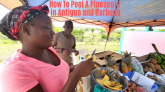 How To Peel A Pineapple in Antigua and Barbuda